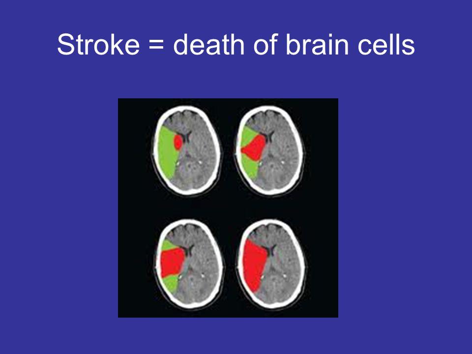 Stroke = death of brain cells