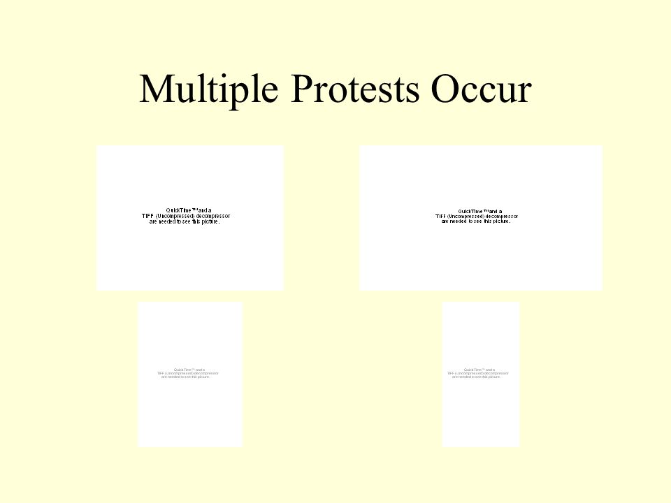 Multiple Protests Occur