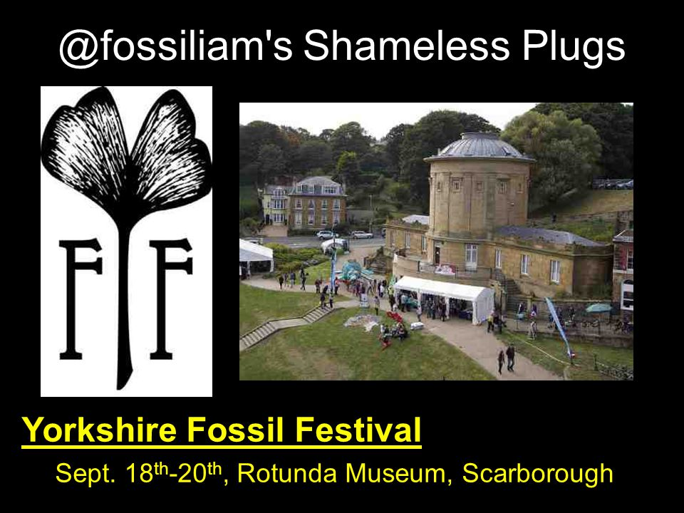 @fossiliam's Shameless Plugs Yorkshire Fossil Festival Sept. 18 th -20 th, Rotunda Museum, Scarborough