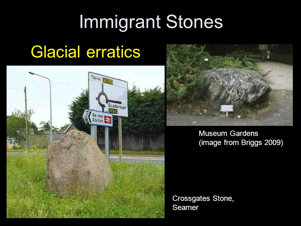 Immigrant Stones Glacial erratics Museum Gardens (image from Briggs 2009) Crossgates Stone, Seamer