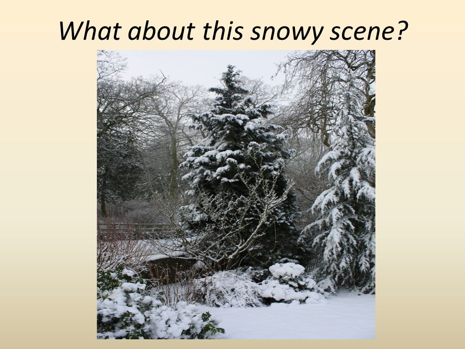 What about this snowy scene?