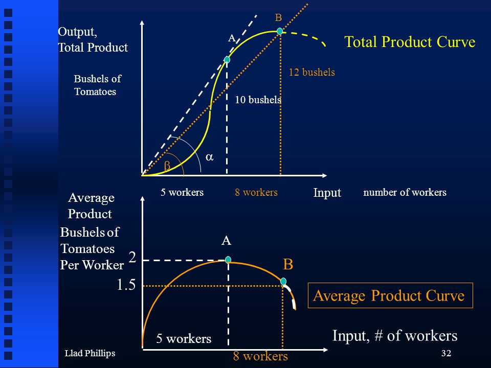 Llad Phillips32 Output, Total Product Input Bushels of Tomatoes number of workers A 10 bushels 5 workers  B  8 workers 12 bushels Average Product A Bushels of Tomatoes Per Worker 2 1.5 B 5 workers 8 workers Input, # of workers Total Product Curve Average Product Curve