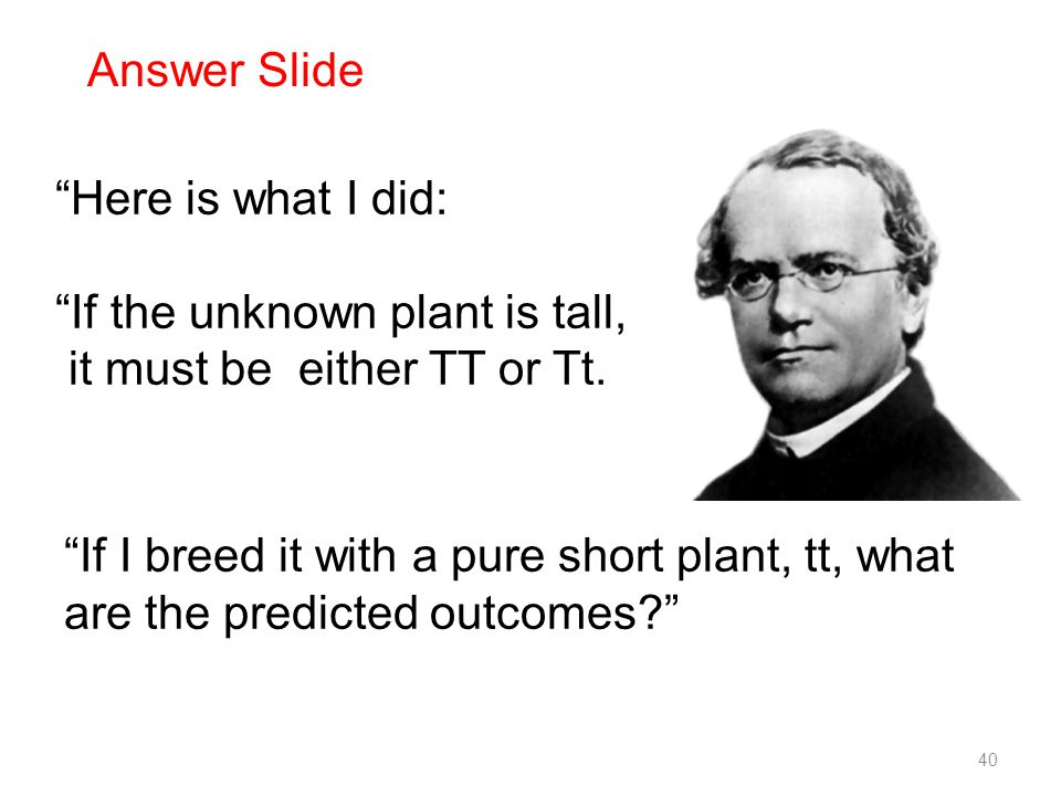 Here is what I did: If the unknown plant is tall, it must be either TT or Tt.