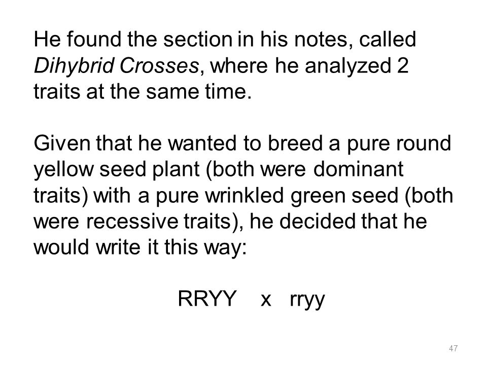He found the section in his notes, called Dihybrid Crosses, where he analyzed 2 traits at the same time.