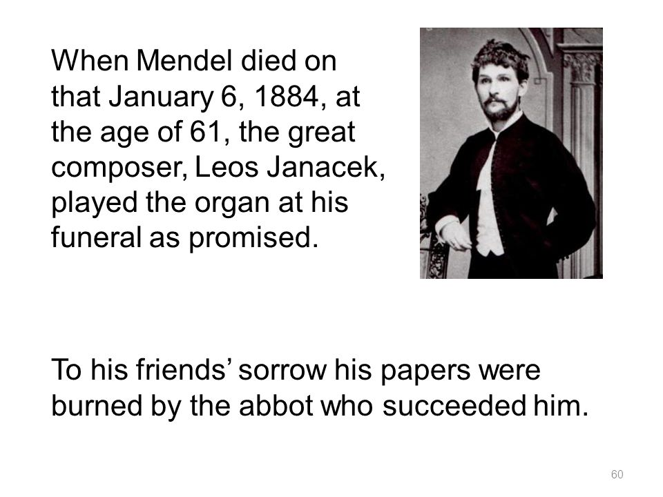 When Mendel died on that January 6, 1884, at the age of 61, the great composer, Leos Janacek, played the organ at his funeral as promised.