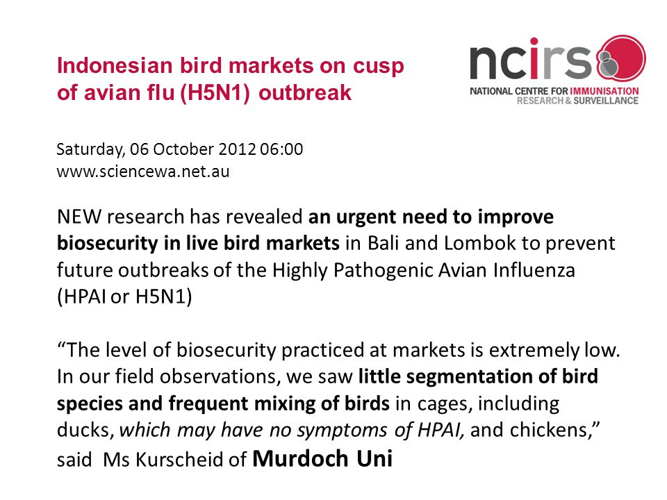 www.ncirs.usyd.edu.au Indonesian bird markets on cusp of avian flu (H5N1) outbreak Saturday, 06 October 2012 06:00 www.sciencewa.net.au NEW research has revealed an urgent need to improve biosecurity in live bird markets in Bali and Lombok to prevent future outbreaks of the Highly Pathogenic Avian Influenza (HPAI or H5N1) The level of biosecurity practiced at markets is extremely low.