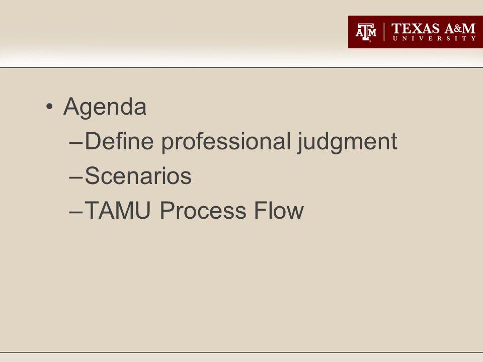 Agenda –Define professional judgment –Scenarios –TAMU Process Flow