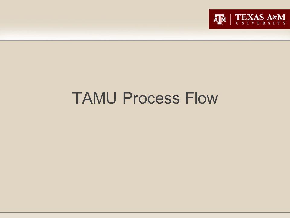 TAMU Process Flow