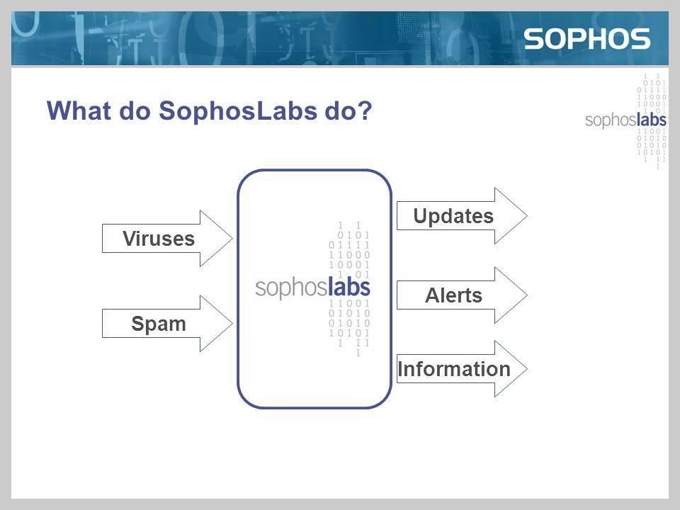 What do SophosLabs do? Viruses Spam Updates Alerts Information