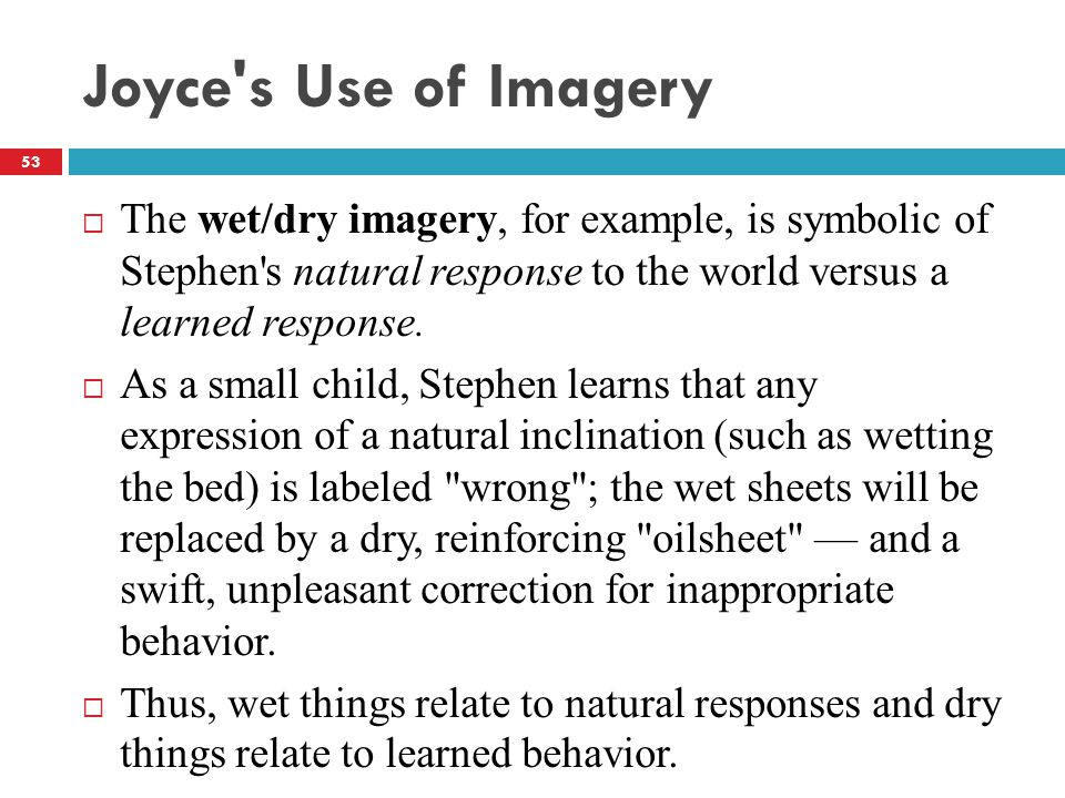 Joyce s Use of Imagery  The wet/dry imagery, for example, is symbolic of Stephen s natural response to the world versus a learned response.