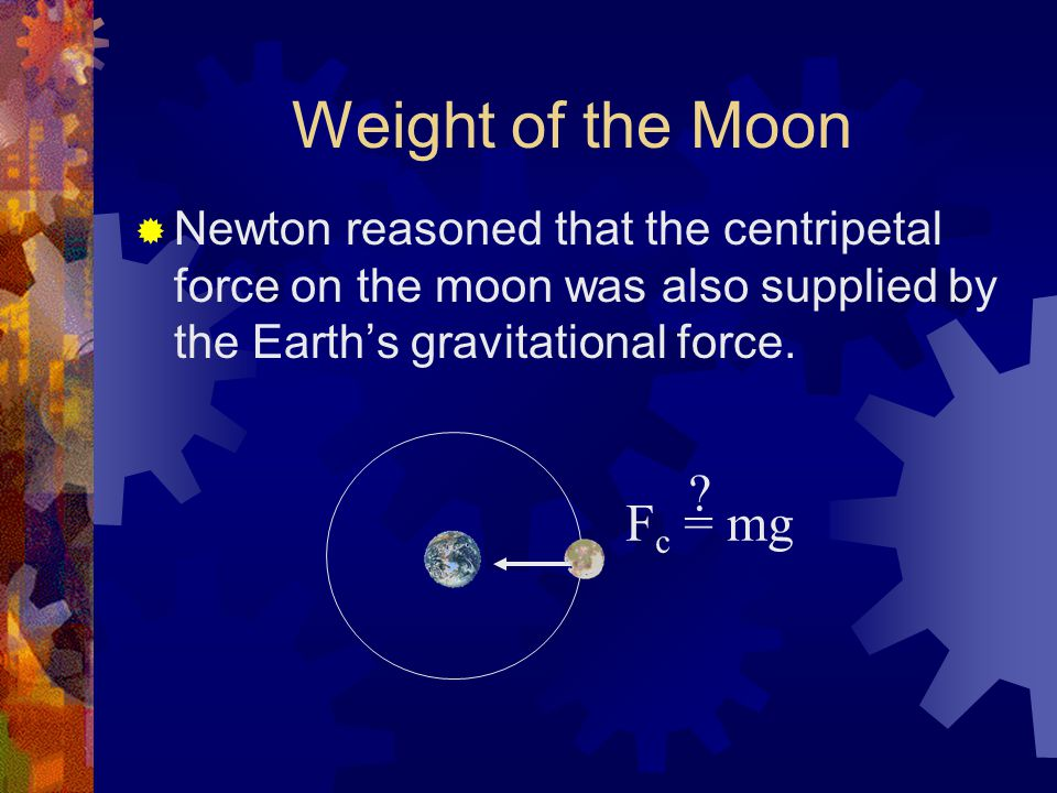 Weight of the Moon  Newton reasoned that the centripetal force on the moon was also supplied by the Earth's gravitational force. F c = mg ?