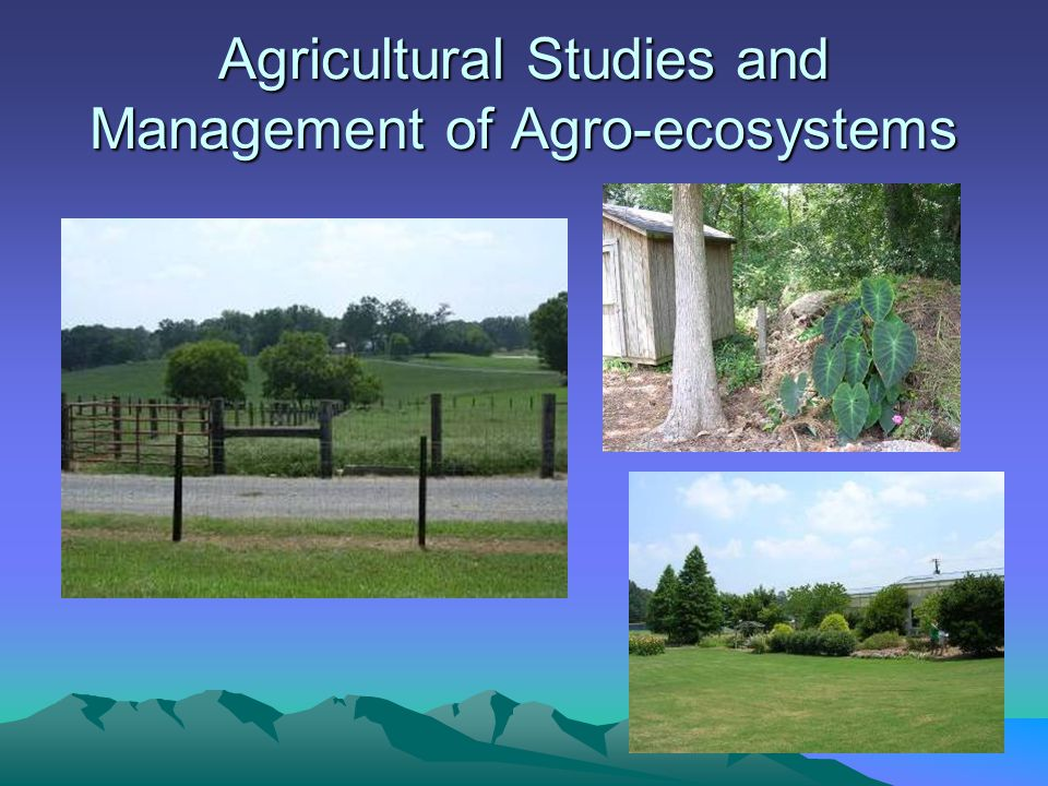 Agricultural Studies and Management of Agro-ecosystems