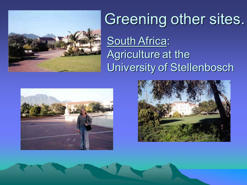 South Africa: Agriculture at the University of Stellenbosch Greening other sites.