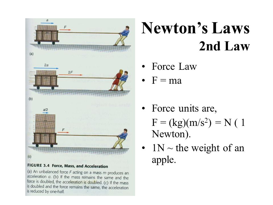 Newton's Laws 2nd Law Force Law F = ma Force units are, F = (kg)(m/s 2 ) = N ( 1 Newton). 1N ~ the weight of an apple.