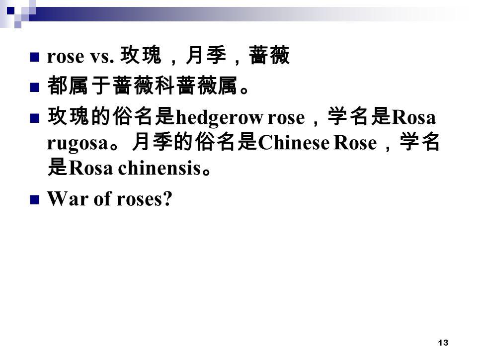 13 rose vs.