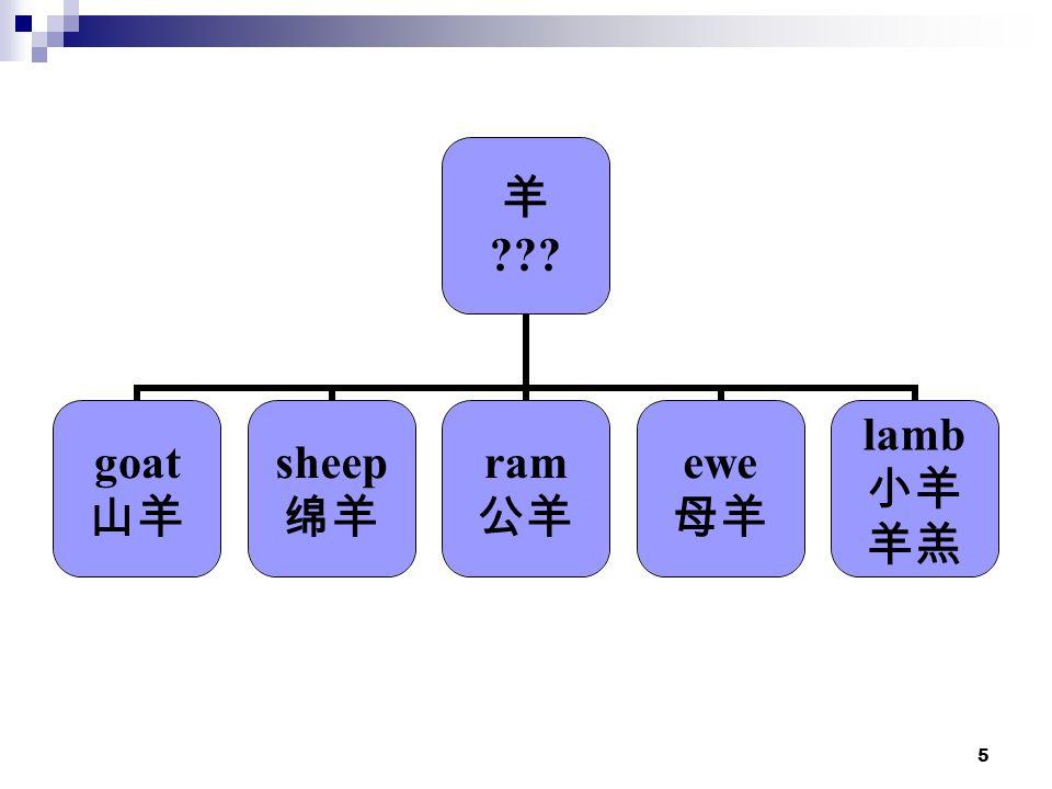 5 羊 goat 山羊 sheep 绵羊 ram 公羊 ewe 母羊 lamb 小羊 羊羔