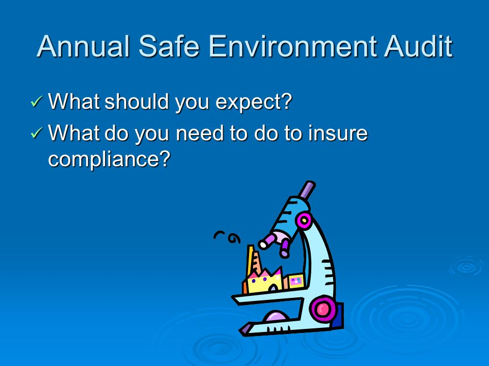 Annual Safe Environment Audit What should you expect.