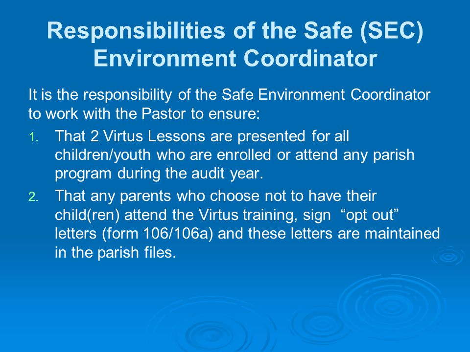 Responsibilities of the Safe (SEC) Environment Coordinator It is the responsibility of the Safe Environment Coordinator to work with the Pastor to ensure: 1.