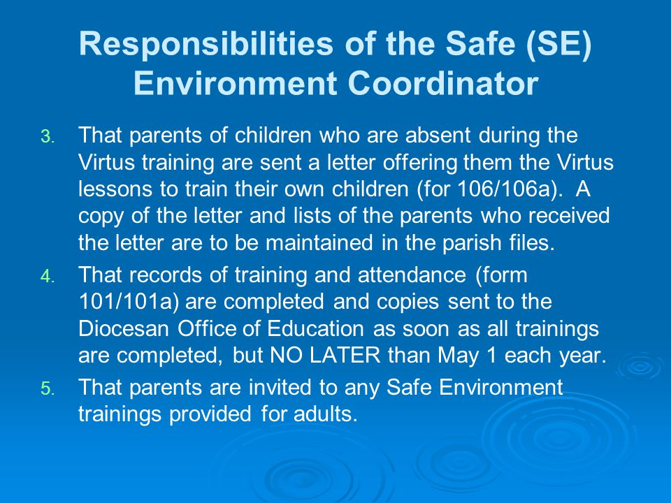 Responsibilities of the Safe (SE) Environment Coordinator 3.