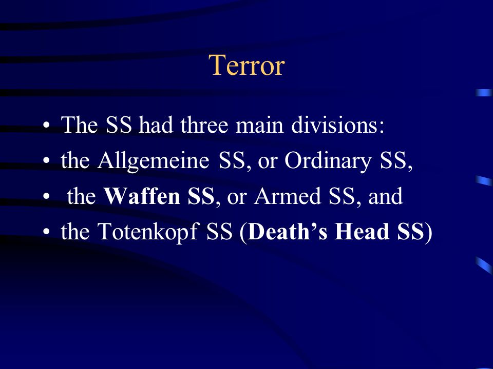 Terror The SS had three main divisions: the Allgemeine SS, or Ordinary SS, the Waffen SS, or Armed SS, and the Totenkopf SS (Death's Head SS)