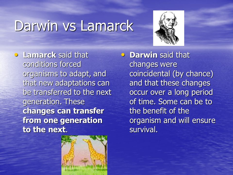 Darwin vs Lamarck Lamarck said that conditions forced organisms to adapt, and that new adaptations can be transferred to the next generation.