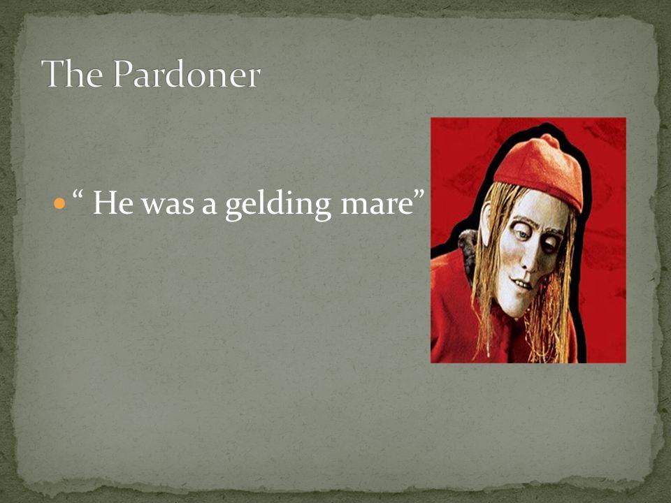 He was a gelding mare