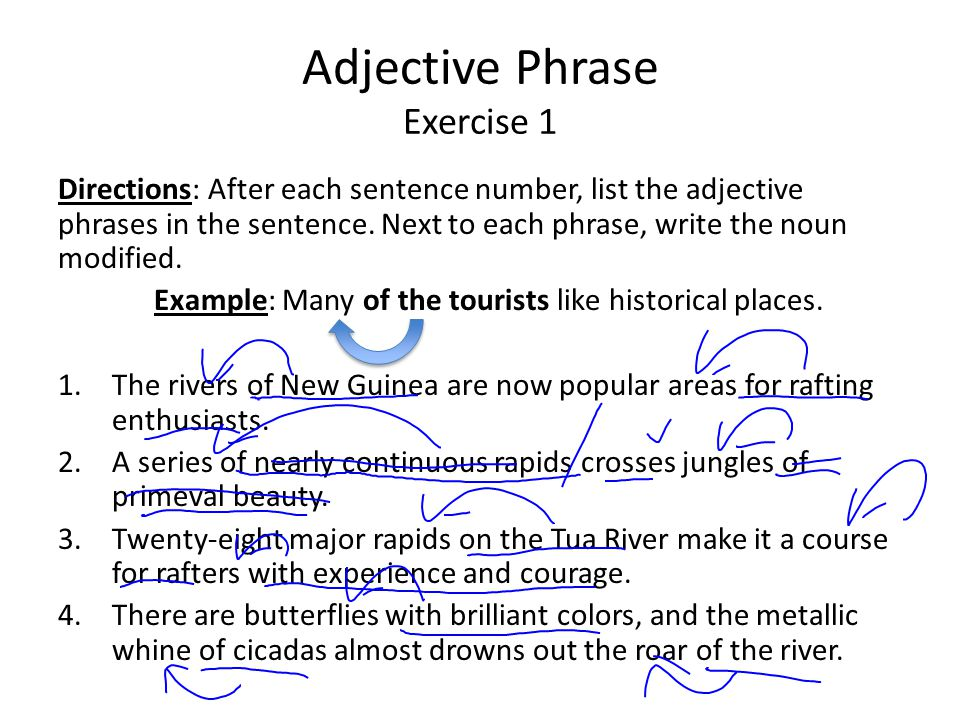 Adjective Phrase Exercise 1 Directions: After each sentence number, list the adjective phrases in the sentence. Next to each phrase, write the noun mo