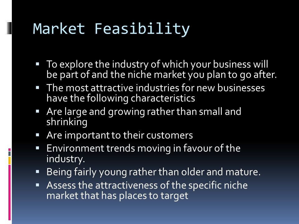Market Feasibility  To explore the industry of which your business will be part of and the niche market you plan to go after.  The most attractive i