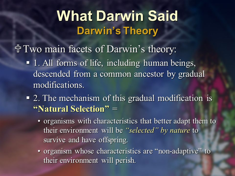 What Darwin Said Darwin's Theory  Two main facets of Darwin's theory:  1.