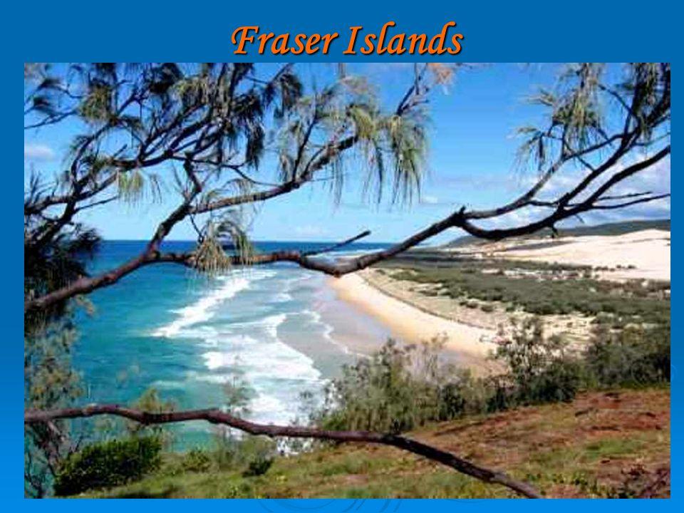 Fraser Islands