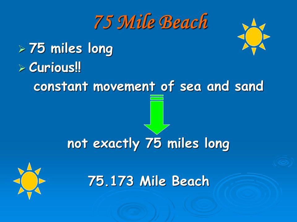 75 Mile Beach  75 miles long  Curious!.