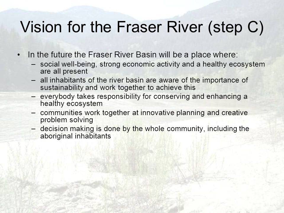 Vision for the Fraser River (step C) In the future the Fraser River Basin will be a place where: –social well-being, strong economic activity and a he