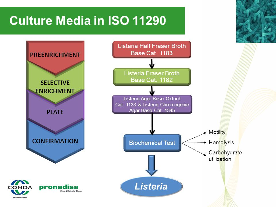 Culture Media in ISO 11290 CONFIRMATION PREENRICHMENT SELECTIVE ENRICHMENT PLATE Biochemical Test Listeria Half Fraser Broth Base Cat. 1183 Listeria F