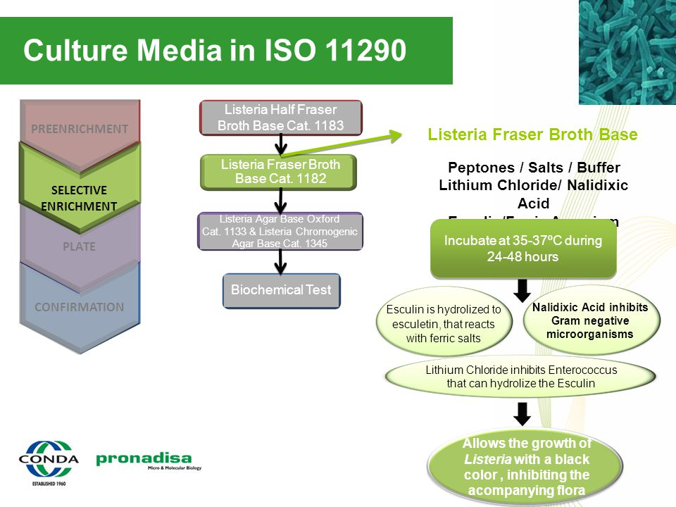 Culture Media in ISO 11290 CONFIRMATION PREENRICHMENT PLATE Biochemical Test Listeria Half Fraser Broth Base Cat. 1183 Listeria Fraser Broth Base Cat.