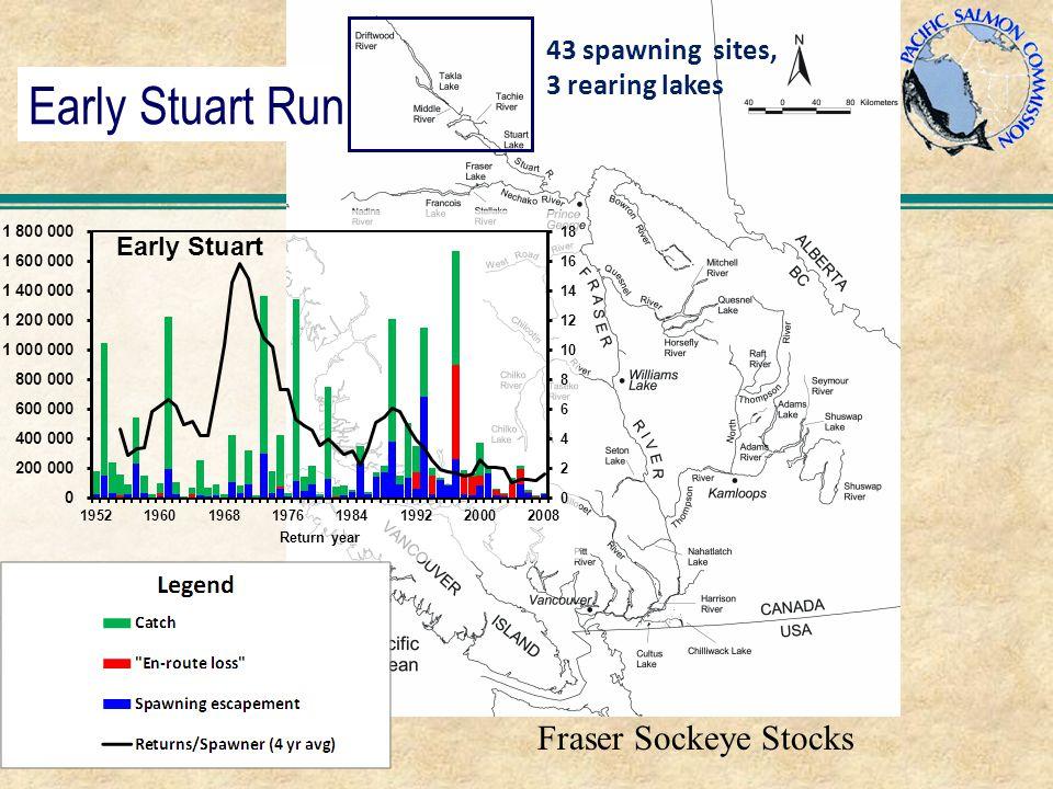 Early Stuart Run Fraser Sockeye Stocks 43 spawning sites, 3 rearing lakes