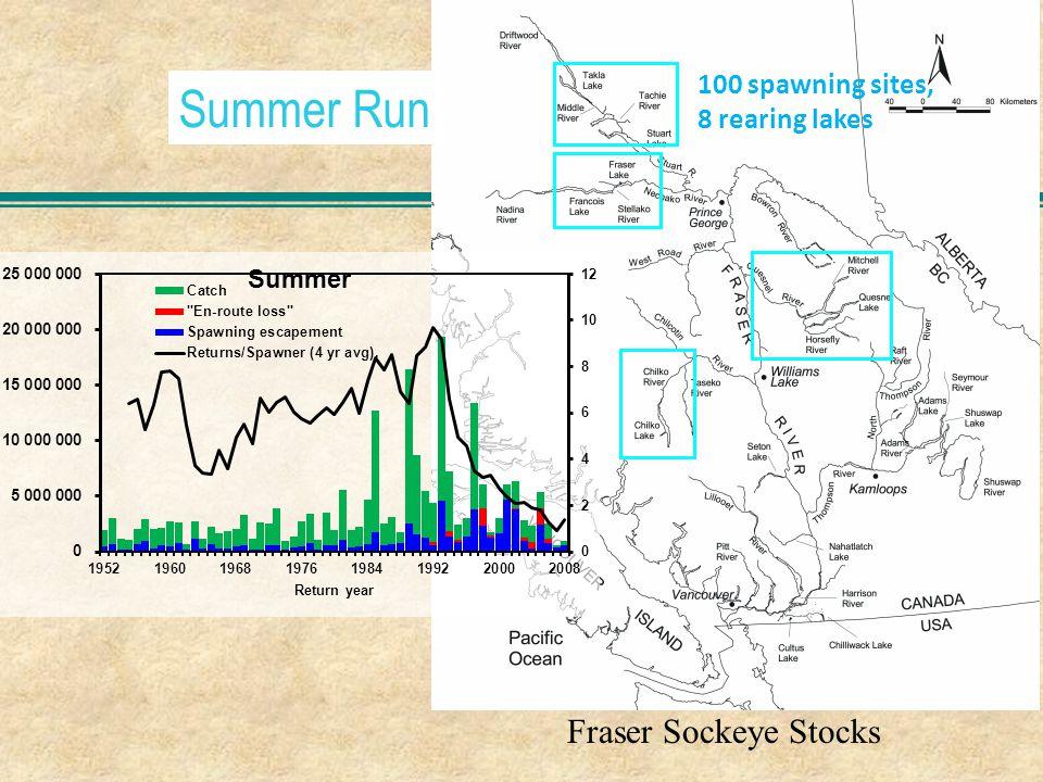 Summer Run Fraser Sockeye Stocks 100 spawning sites, 8 rearing lakes