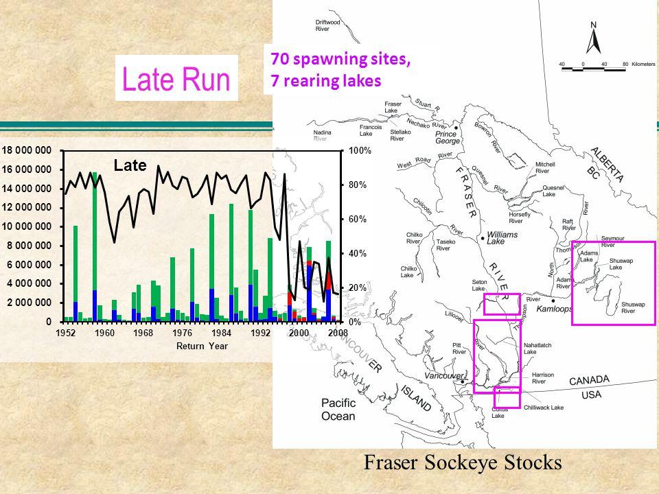Late Run Fraser Sockeye Stocks 70 spawning sites, 7 rearing lakes
