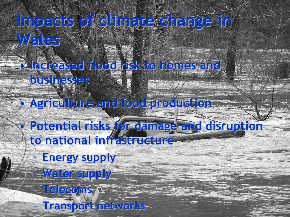 Impacts of climate change for Wales Impact on wildlife and environment, particularly sensitive habitatsImpact on wildlife and environment, particularly sensitive habitats –Loss of native species –Coastal and lowland areas –Freshwater ecosystems Changing demands and social pressures:Changing demands and social pressures: –Healthcare –Social care –Emergency services Economic challenges and opportunitiesEconomic challenges and opportunities