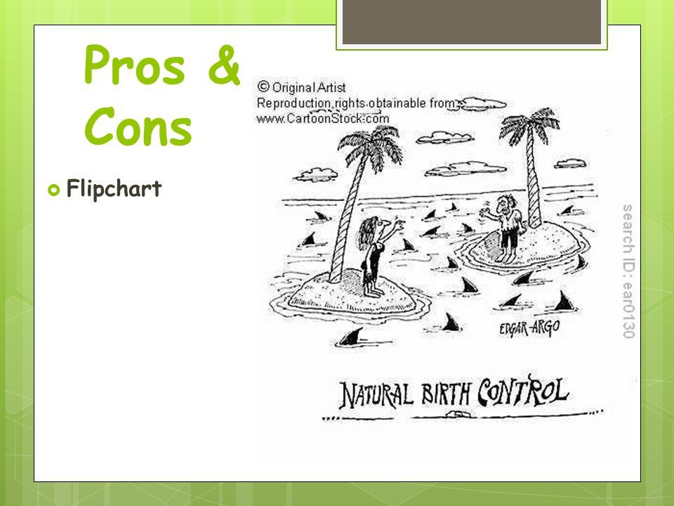 Pros & Cons  Flipchart