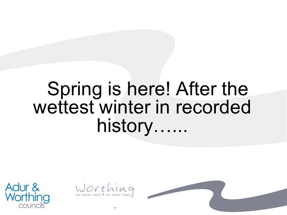 Spring is here! After the wettest winter in recorded history…...