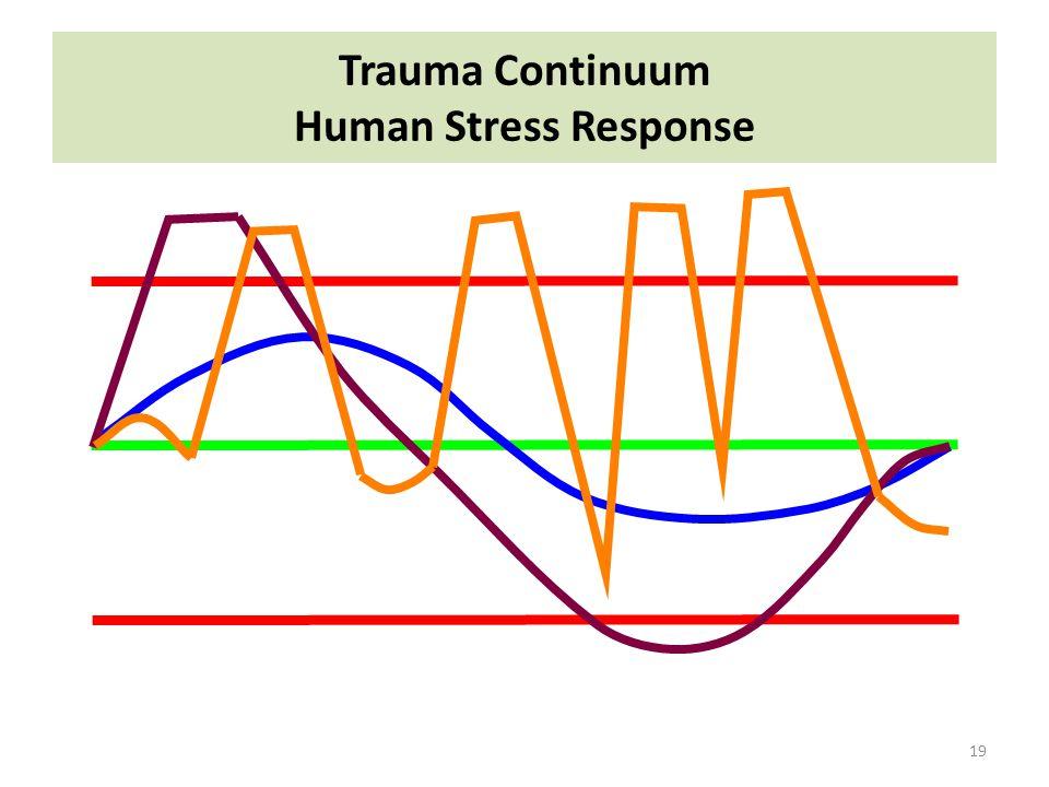 Trauma Continuum Human Stress Response 19
