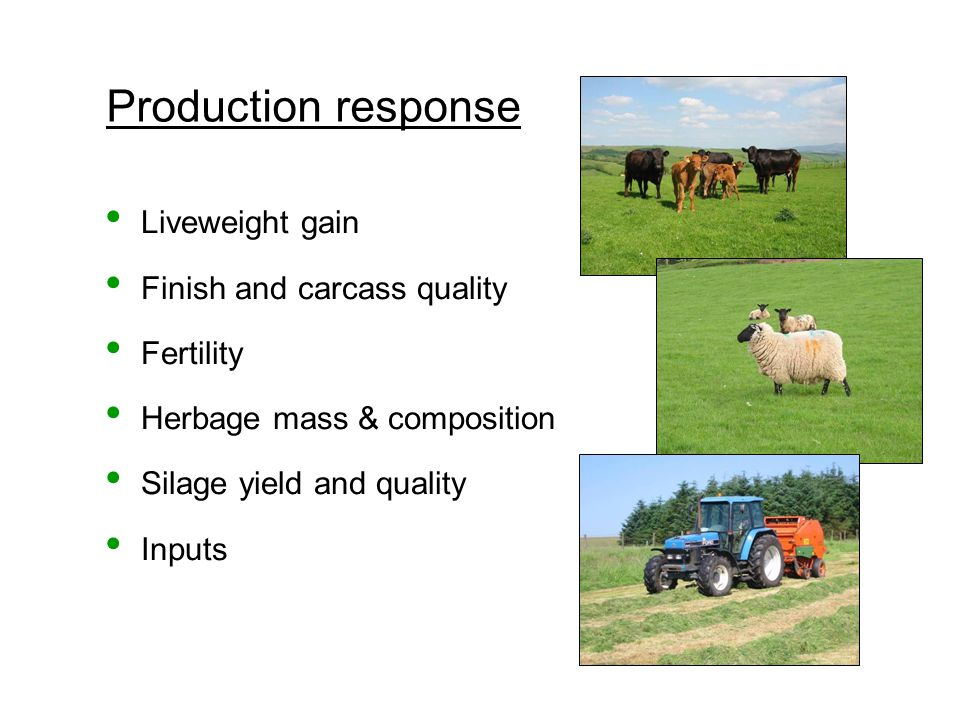 Production response Liveweight gain Finish and carcass quality Fertility Herbage mass & composition Silage yield and quality Inputs