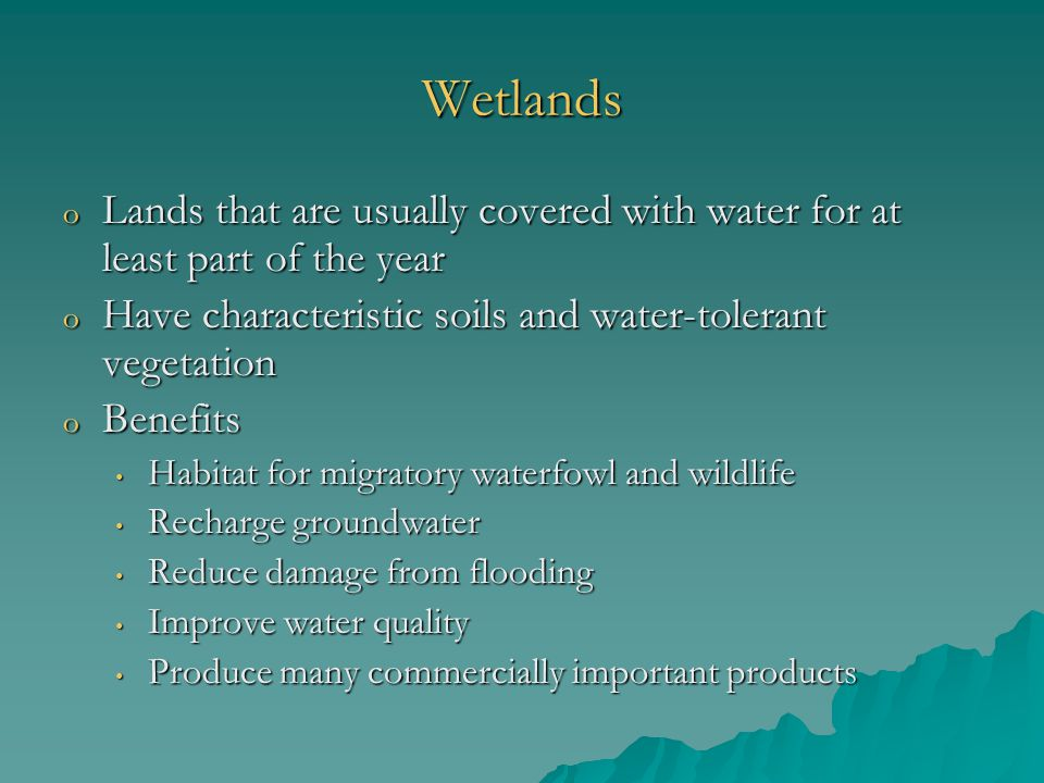 Wetlands o Lands that are usually covered with water for at least part of the year o Have characteristic soils and water-tolerant vegetation o Benefits Habitat for migratory waterfowl and wildlife Habitat for migratory waterfowl and wildlife Recharge groundwater Recharge groundwater Reduce damage from flooding Reduce damage from flooding Improve water quality Improve water quality Produce many commercially important products Produce many commercially important products