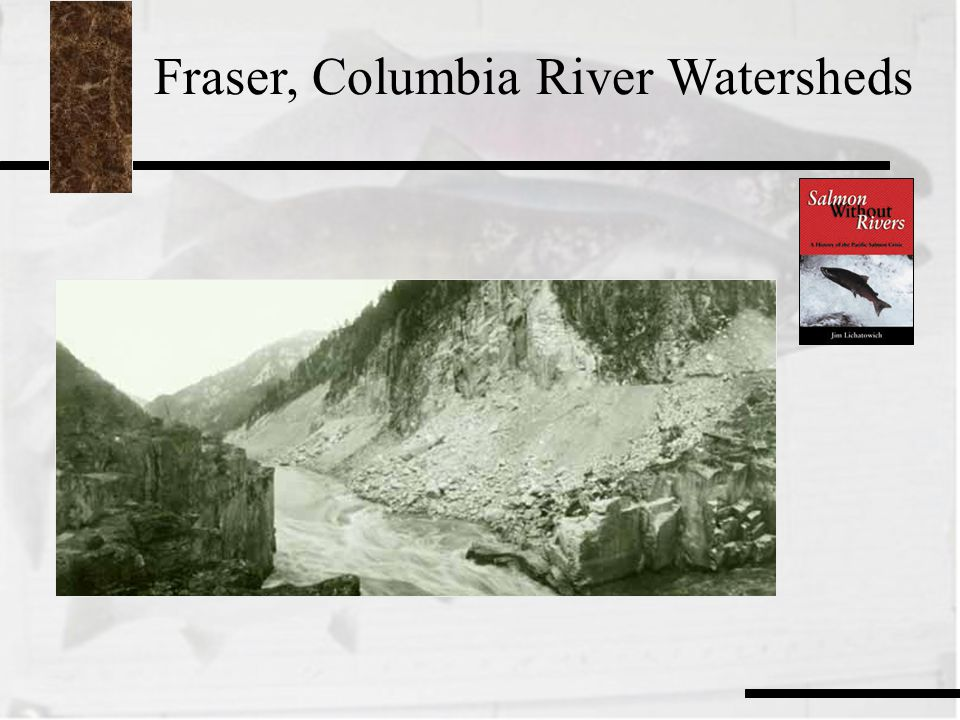 Fraser, Columbia River Watersheds
