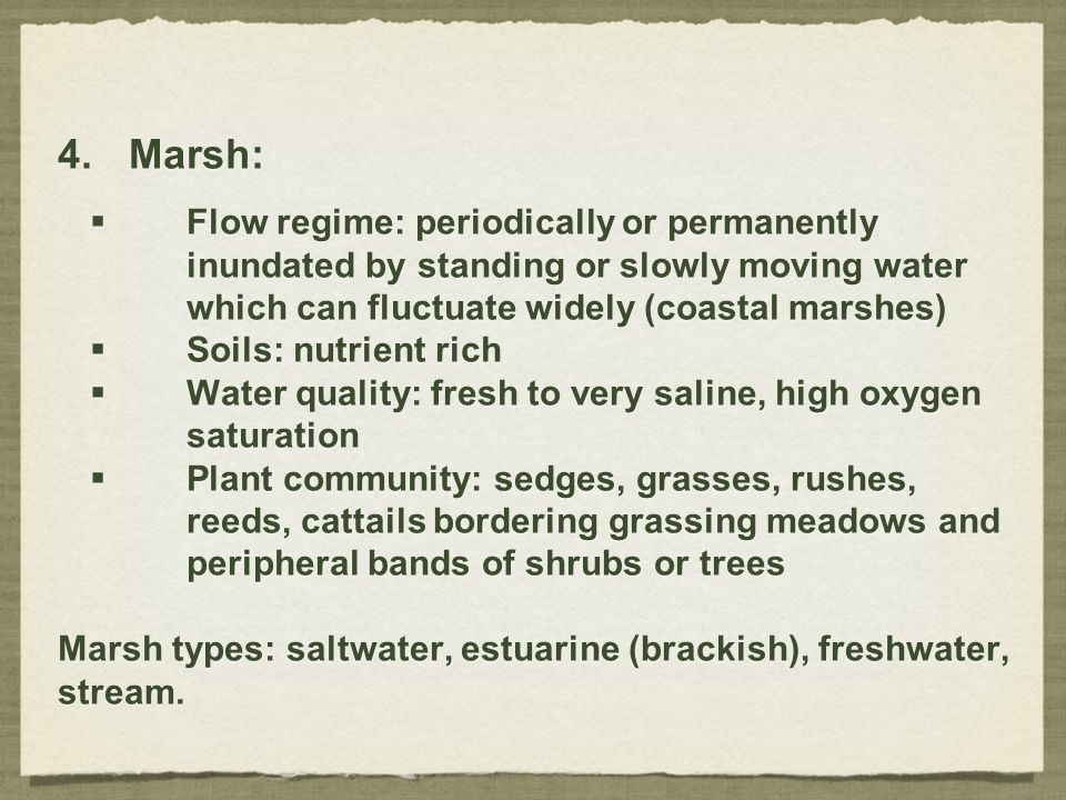 4.Marsh:  Flow regime: periodically or permanently inundated by standing or slowly moving water which can fluctuate widely (coastal marshes)  Soils: