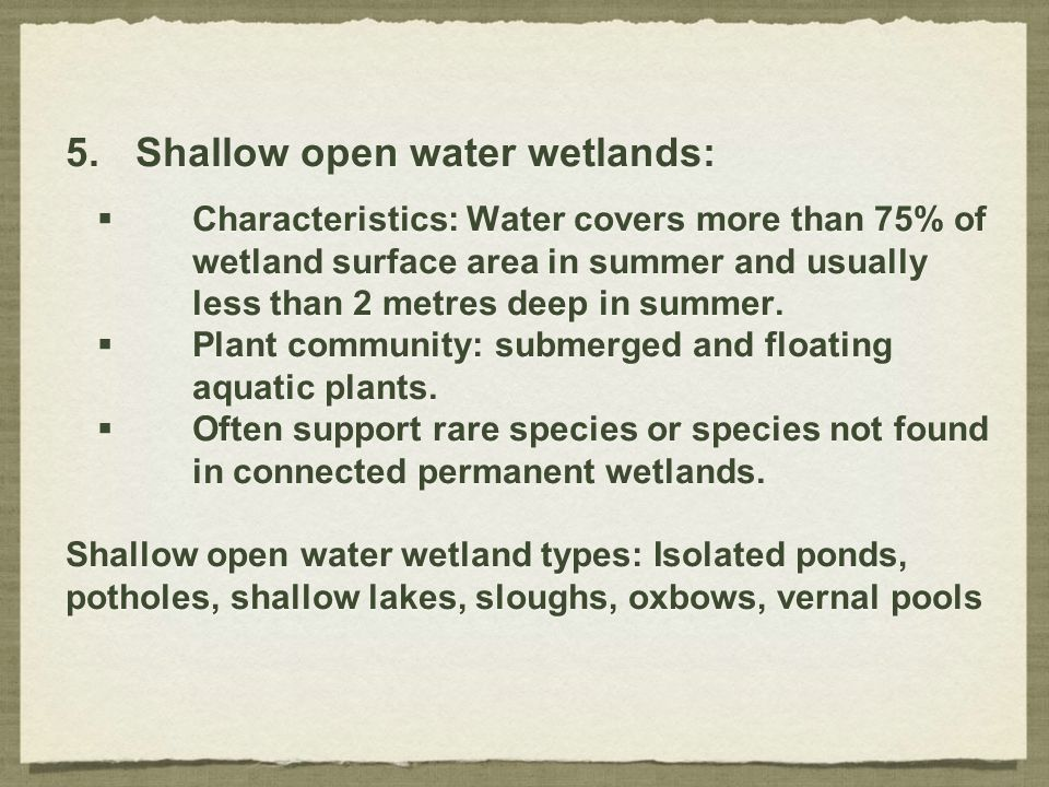 5.Shallow open water wetlands:  Characteristics: Water covers more than 75% of wetland surface area in summer and usually less than 2 metres deep in