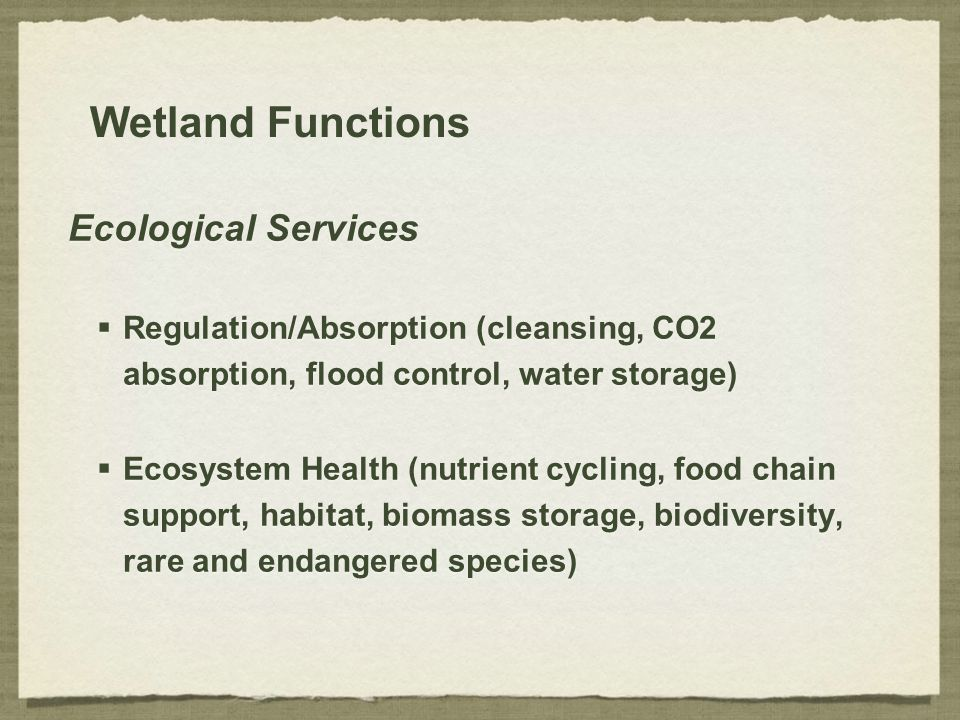 Wetland Functions Ecological Services  Regulation/Absorption (cleansing, CO2 absorption, flood control, water storage)  Ecosystem Health (nutrient c