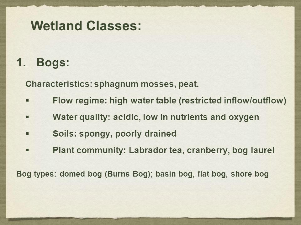 Wetland Classes: 1.Bogs: Characteristics: sphagnum mosses, peat.  Flow regime: high water table (restricted inflow/outflow)  Water quality: acidic,
