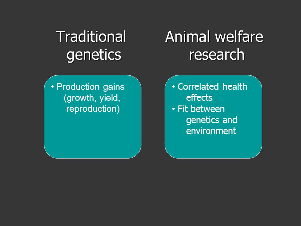 Traditional genetics genetics Animal welfare Animal welfare research research Production gains (growth, yield, reproduction) Correlated health effects Fit between genetics and environment
