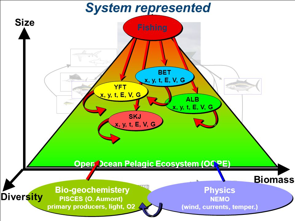 System represented Bio-geochemistery PISCES (O.
